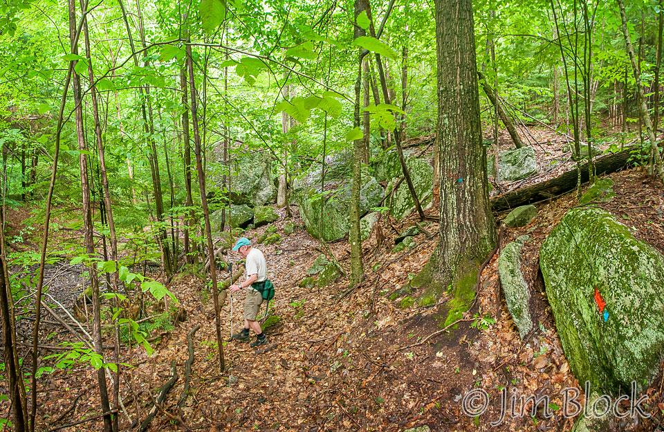 dl527-brian-hiking-cook-easement-pan-5