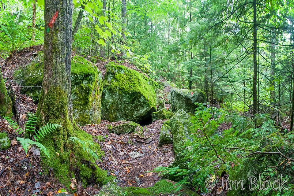 dl564-along-the-erratics-trail-pan-6