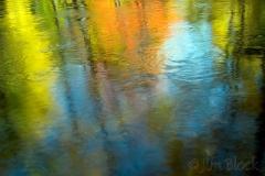 fall-reflections