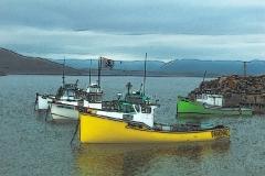 white-point-harbor