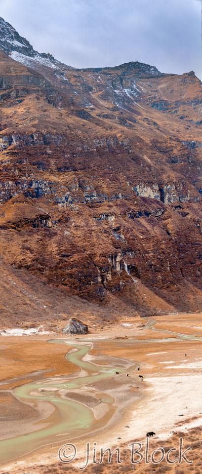 BHU-9370--Yaks-in-Paro-Chhu-below-cliff----Pan-(7)