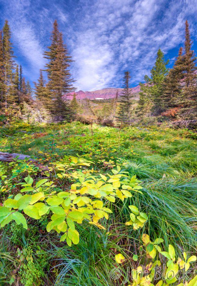 DX793--Along-Pray-Lake-Trail---Pan-(5)